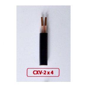 Dây cáp điện Cadisun CXV 2x4
